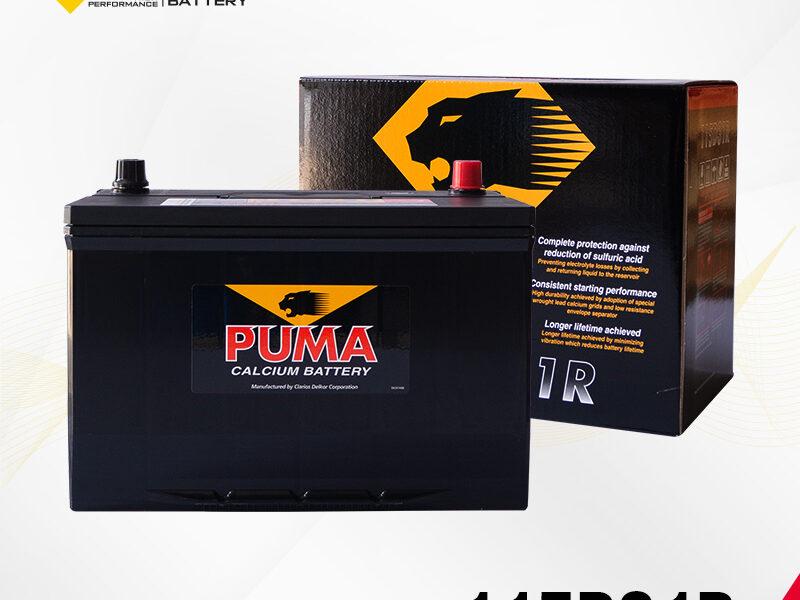 แบตเตอรี่รถยนต์ PUMA รุ่น 115D31R setbox