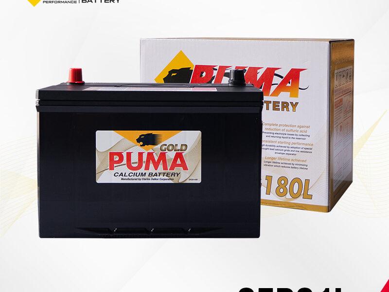 แบตเตอรี่รถยนต์ PUMA รุ่น 95D31L setbox
