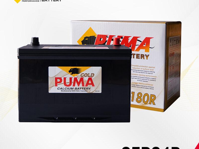 แบตเตอรี่รถยนต์ PUMA รุ่น 95D31R setbox