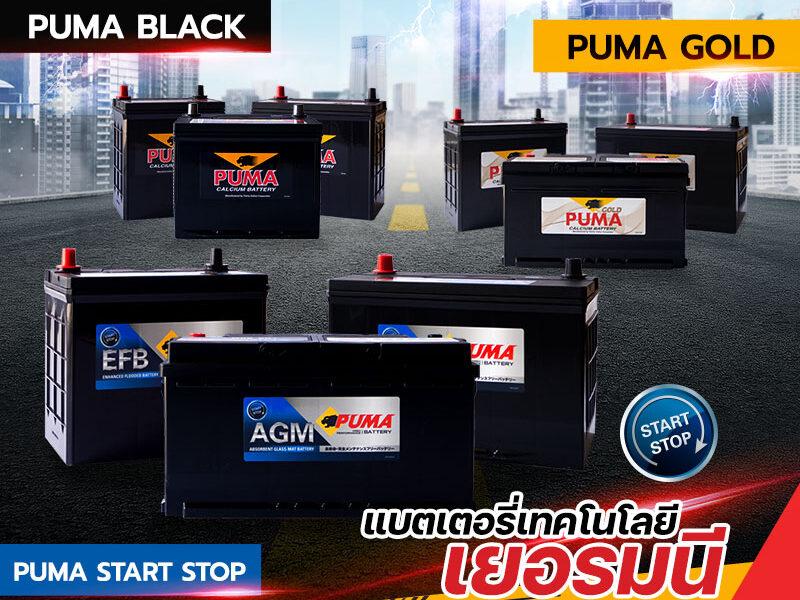 เลือกแบตเตอรี่ PUMA แบบไหน ให้เหมาะกับรถคุณ